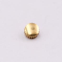 Hermes waterproof golden crown