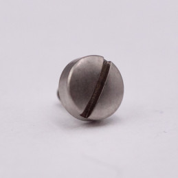 Omega screw for polished steel leather tip