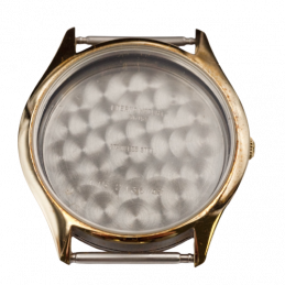 Eterna gold and steel case...